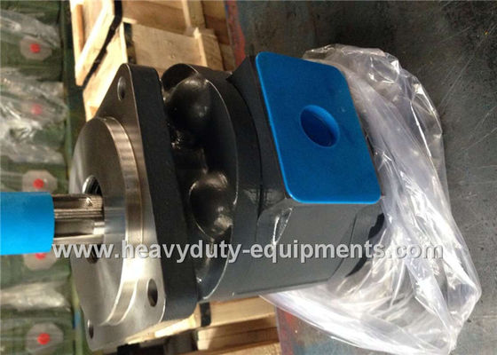 Çin Engineering Construction Equipment Spare Parts Industrial Hydraulic Pumps LW280 WZ3025 51 Shaft Extension Fabrika